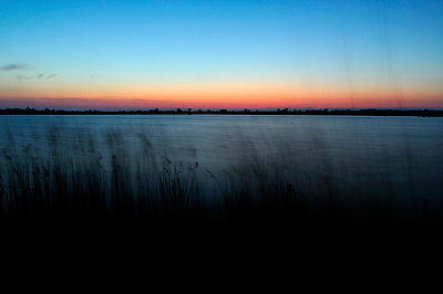 Twilight in the swamps - p8290161 by Régis Domergue