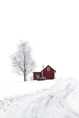 Einsames Haus, Schweden - p1396m1515314 von Hartmann + Beese