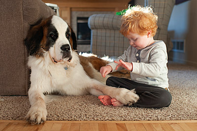 Toddler boy plays with dogs foot on floor with dog giving annoyed face - p1166m2136699 by Cavan Images