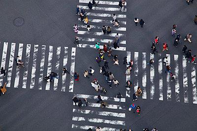 Zebra crossing - p1399m2149690 by Daniel Hischer