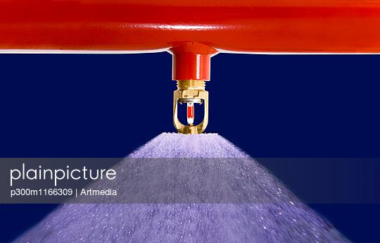 p300m1166309 von Artmedia