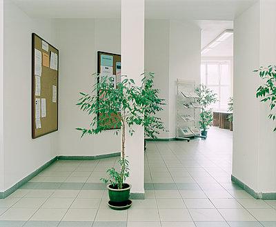 Grünpflanzen in einem Bürogebäude - p1320m1222072 von Matija Brumen