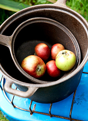 Windfall apples in saucepans on gas stove;  Isle of Wight;  UK - p349m920043 by Rachel Whiting