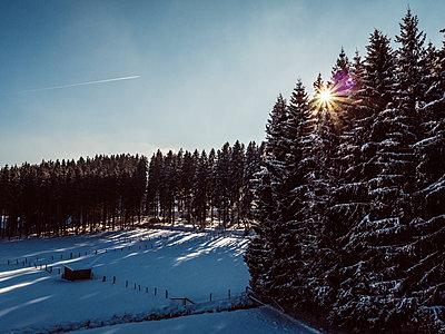 Winterlandschaft am Morgen  - p586m1131902 von Kniel Synnatzschke