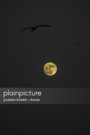 Full moon - p1243m1516491 by Archer