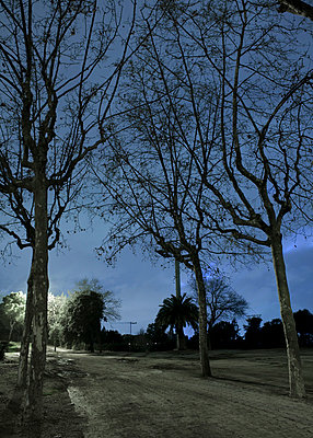 Park at night in Barcelona - p1072m829068 by Joan Seculi