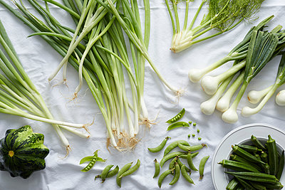 Fresh green vegetables on white tablecloth - p924m1494906 by Ryan Benyi Photography