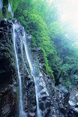 Waterfall at Ogawadani-roka, Kanagawa Prefecture, Honshu, Japan - p5148397f by a.collectionRF