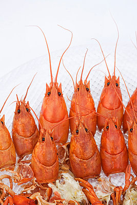 Crayfishes In Plate - p816m913273 by Inger Marie Grini