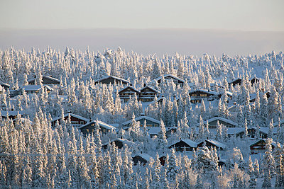 Chalets at ski resort in forest - p31228302f by Per Eriksson