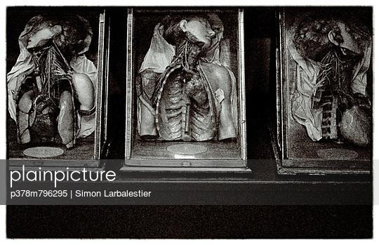 Three wax torsos - p378m796295 by Simon Larbalestier
