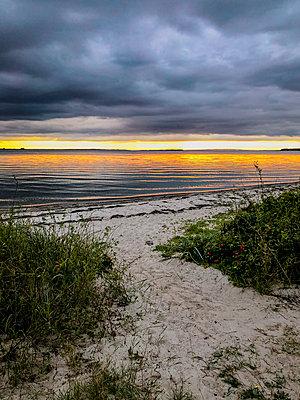 Evening on the Baltic Sea beach - p382m2283991 by Anna Matzen