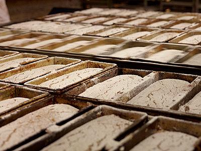 Geschobene Brote  in Backstube - p897m1183581 von MICK