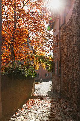 Germany, Rhineland-Palatinate, Freinsheim, city wall and empty alley in autumn - p300m2042088 by Gaby Wojciech