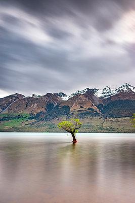 Glenorchy, South Island, New Zealand - p300m2144672 by Scott Masterton