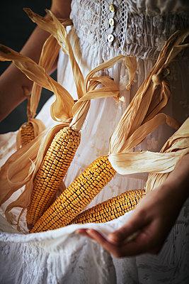 Woman holding corncobs - p968m2020220 by roberto pastrovicchio
