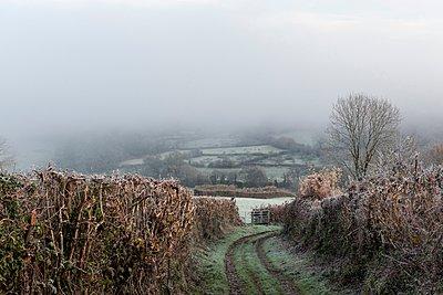 Dirt track, Gunislake, Cornwall, England - p429m1021949f by Colin Hawkins