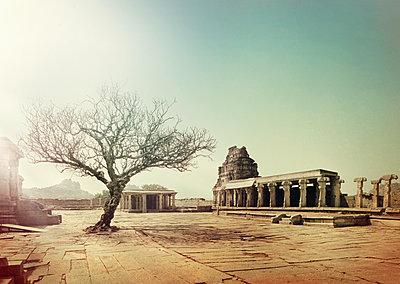 Temple complex in India - p1342m1332674 by Sebastian Burgold