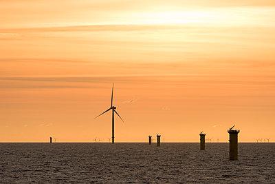 Morgenstimmung im Offshore Windpark Godewind - p1079m1092229 von Ulrich Mertens
