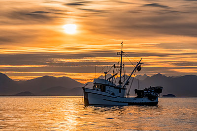 Seiners anchored in Amalga Harbor at sunset awaiting a commercial salmon opening, Southeast Alaska; Juneau, Alaska, United States of America - p442m2077678 by John Hyde