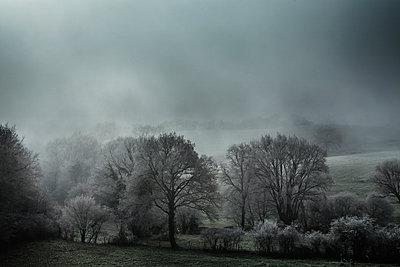 Winterlandschaft - p910m1195097 von Philippe Lesprit