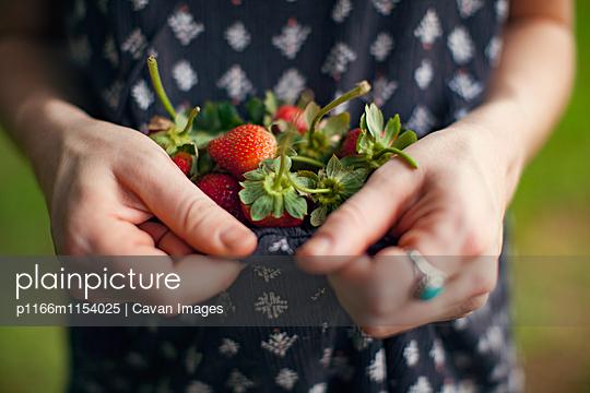p1166m1154025 von Cavan Images