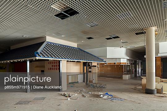p855m971915 von Diane Auckland