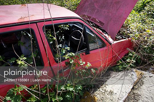 p429m1155961 von Leon Harris