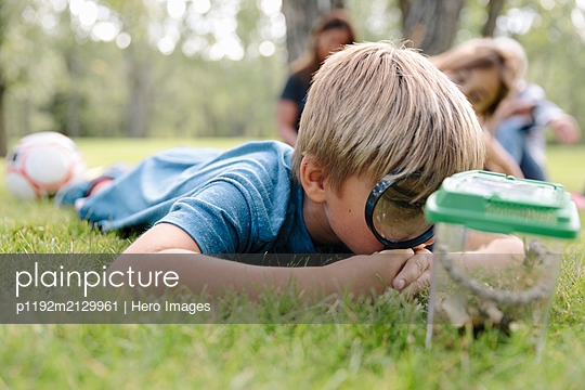 Young boy looking at bugs in jar with magnifying glass - p1192m2129961 by Hero Images