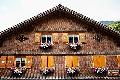 Alpine house - p464m918856 by Elektrons 08