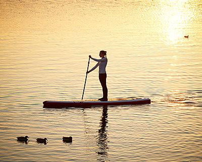 Stand up Paddle in Hamburg - p1124m1011376 von Willing-Holtz