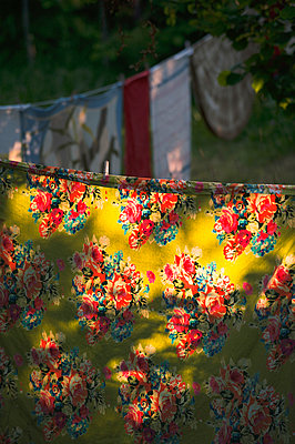 Colorful table cloth on clothes-line in evening sun - p1418m1572467 by Jan Håkan Dahlström