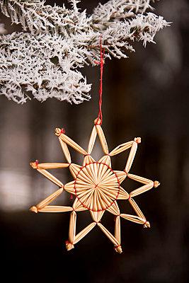 Christmas tree decoration - p533m1039578 by Böhm Monika