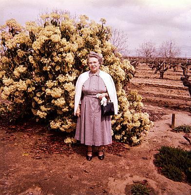 Older Caucasian woman wearing dress near vineyard - p555m1444168 by PBNJ Productions