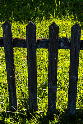 Fence - p488m932659 by Bias