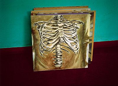 Skeleton - p1415m2076748 by Sophie Barbasch