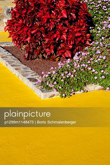 Blumenbeet - p1299m1148473 von Boris Schmalenberger