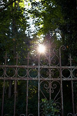 Rusty gate - p464m918834 by Elektrons 08