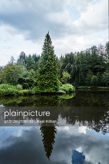 France, Forest lake - p1312m2196183 by Axel Killian