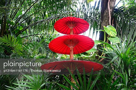 Schirme, Lamai Beach, Insel Samui, Golf von Thailand, Thailand - p1316m1161176 von Thomas Stankiewicz