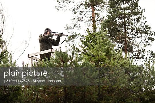 p312m1147575 von Michael Jonsson