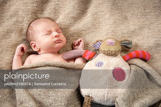 A four week old baby nestled in blankets asleep.  - p429m2190374 by Senserini Lucrezia