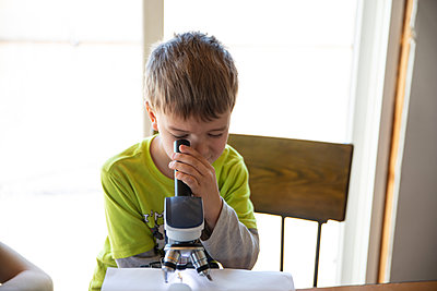 Head on view of little boy looking at bug under microscope - p1166m2236939 by Cavan Images