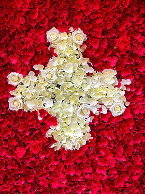Swiss cross from flowers - p382m2263616 by Anna Matzen