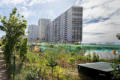Apartment buildings next to allotment gardens - p445m1452446 by Marie Docher