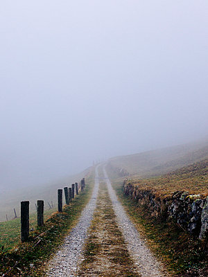Path in the fog - p1177m2076533 by Philip Frowein