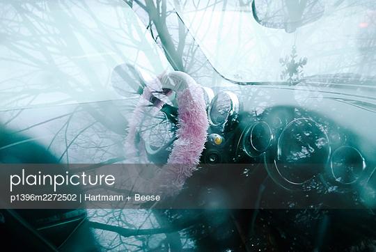 p1396m2272502 by Hartmann + Beese