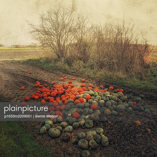 Orange And Green - p1633m2209001 by Bernd Webler