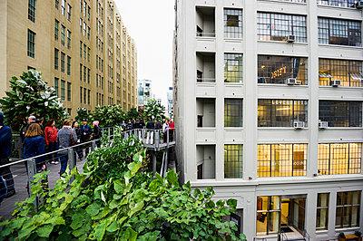 High Line Park, Chelsea, Manhattan, New York, USA - p1316m1422443 by Daniel Schoenen