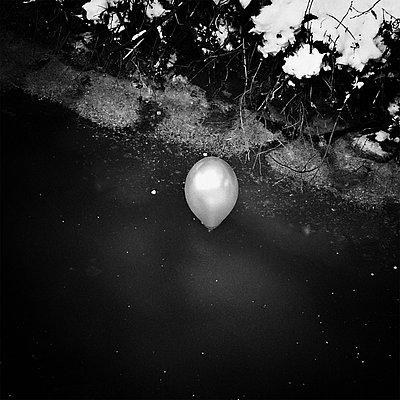 p1578m2150516 by Marcus Hammerschmitt